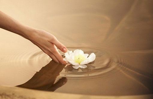 真正的时间和心思把生活本身过出美好和幸福来
