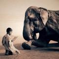 你要善待自己,你要与世界和平共处