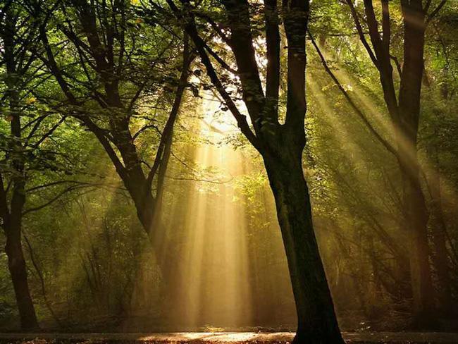 美好生活是自然而然的