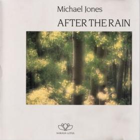 心灵音乐分享:《After the Rain雨后》